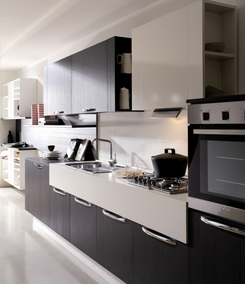 Modern kitchen Cabinets Black & White Theme