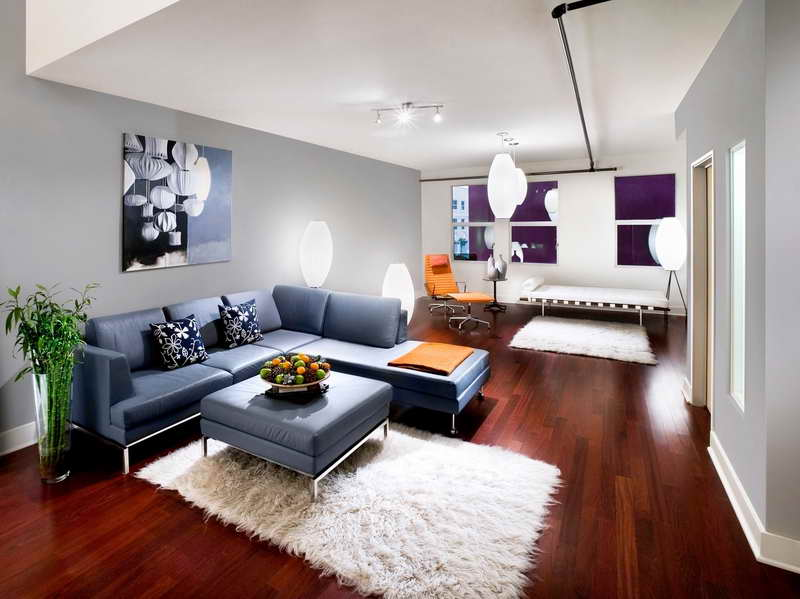 ... Comfortable Apartment Living Room Ideas ...